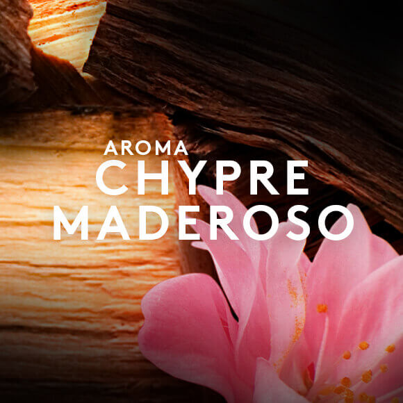 Aroma Chypre Maderoso