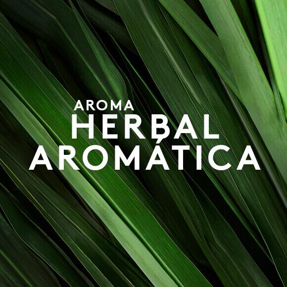 Aroma Herbal Aromática