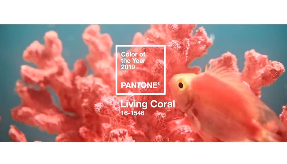 Pantone 2019 - Coral Living